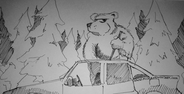 Bears... nature's car thief.